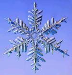 Avatar de snowcrystal